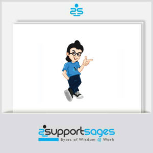 level2 dedicated technical support team for webhosting support