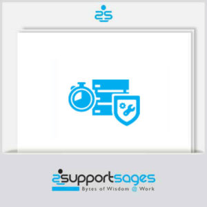 Hourly plesk server administration support for emergency management