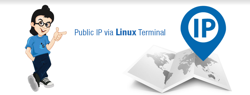 Identify  your public IP via Linux Terminal
