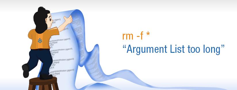 "rm -f *:  ""Argument List too long"""