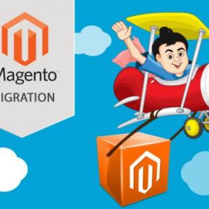 Magento Migration plans